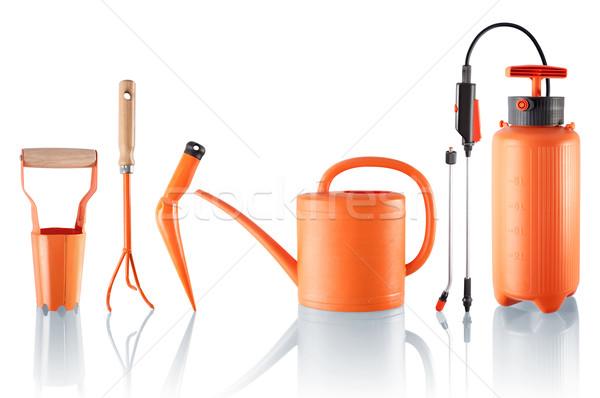 Szett hasznos kerti eszközök négy egy nyomás Stock fotó © georgemuresan