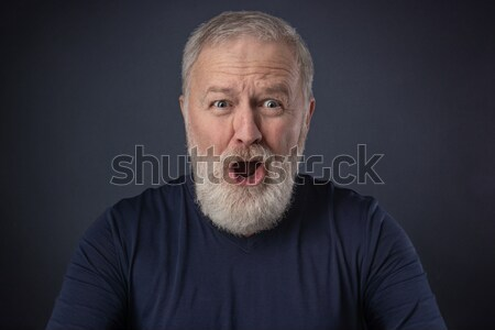 Cinza barba feliz velho velho homem Foto stock © georgemuresan