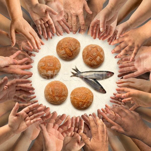 Five small barley loaves and two small fish for many hands Stock photo © georgemuresan