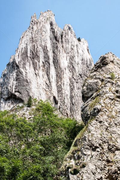 Grande rocha montanha cenário rochas verde Foto stock © georgemuresan