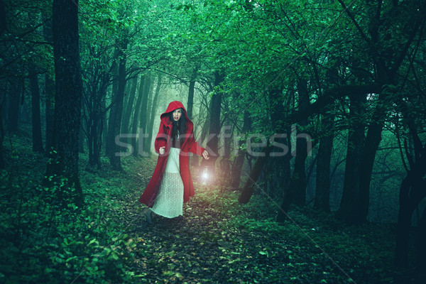Little Red Riding Hood in the woods Stock photo © Geribody