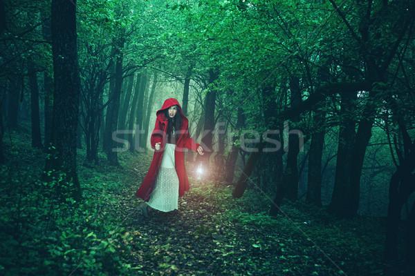 Küçük kırmızı binicilik orman orman doğa Stok fotoğraf © Geribody
