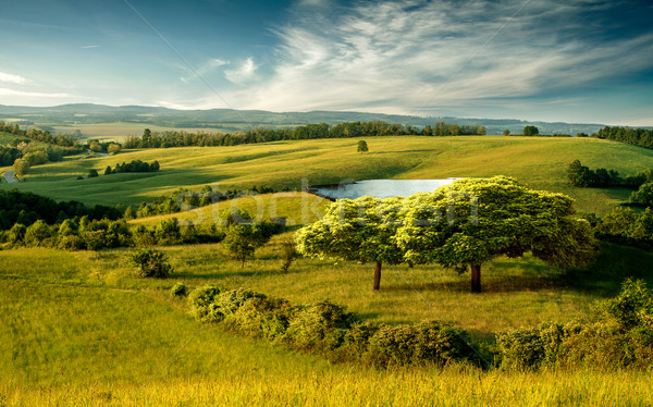 Beautiful hilly landscape with lake and blue cloudy sky Stock photo © Geribody