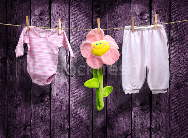 Baby girl clothes and a flower on a clothesline Stock photo © Geribody