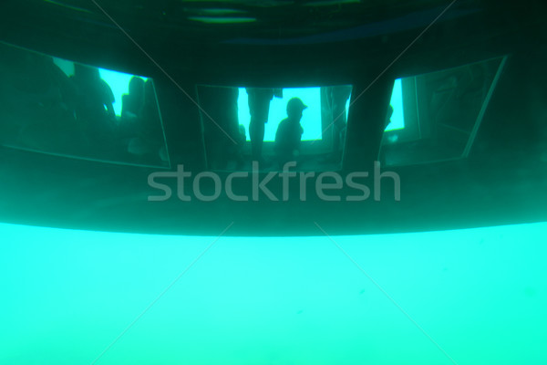 Glass bottomed catamaran below the water Stock photo © Geribody