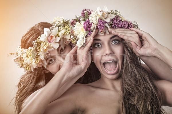 Dois belo primavera fadas engraçado amizade Foto stock © Geribody