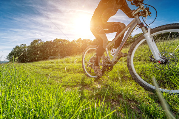 Sport bike, cycling in the beautiful meadow, detail photo, Stock photo © Geribody