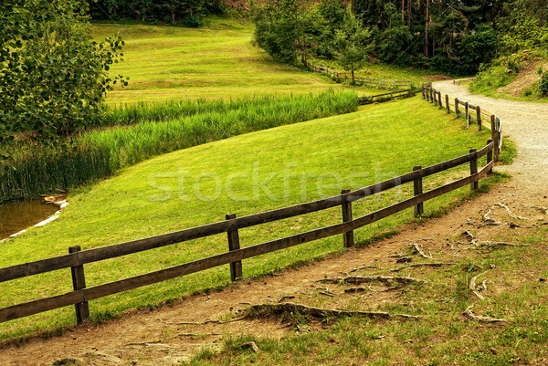 Beautiful alpine farm Stock photo © Geribody