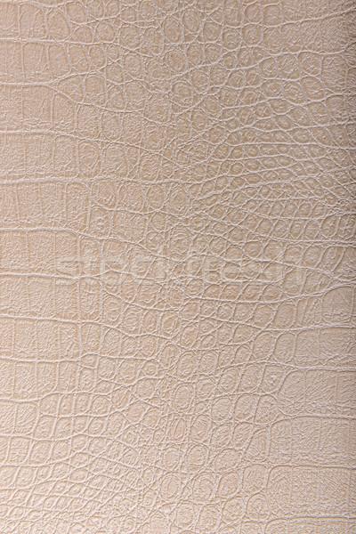 Crocodil piele piele bej textură abstract Imagine de stoc © Geribody