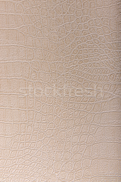 крокодила кожи кожа бежевый текстуры аннотация Сток-фото © Geribody