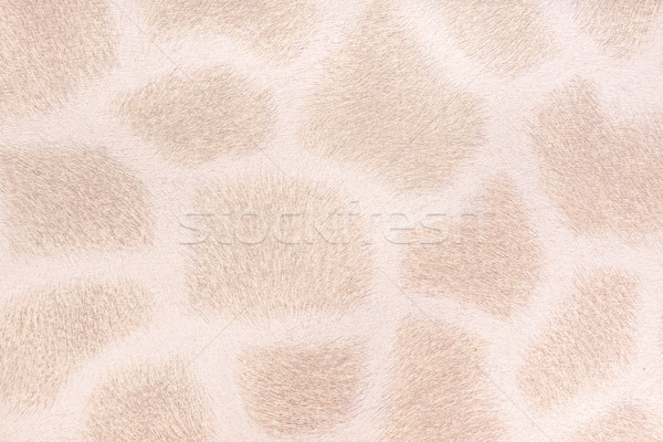жираф мех имитация аннотация дизайна фон Сток-фото © Geribody