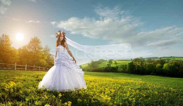 美しい 花嫁 屋外 のどかな 雲 顔 ストックフォト © Geribody
