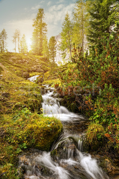 Beautiful mountain stream in the Dolomites Stock photo © Geribody