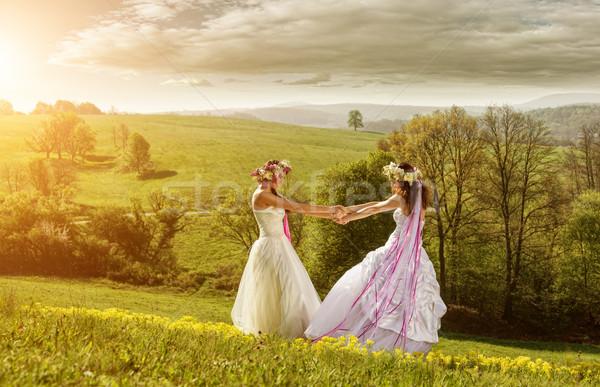 Mooie bruid ochtend idyllisch weide vriendschap Stockfoto © Geribody