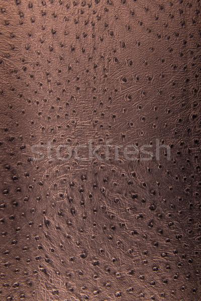 Stock photo: Bronze leopard pattern, imitation, background