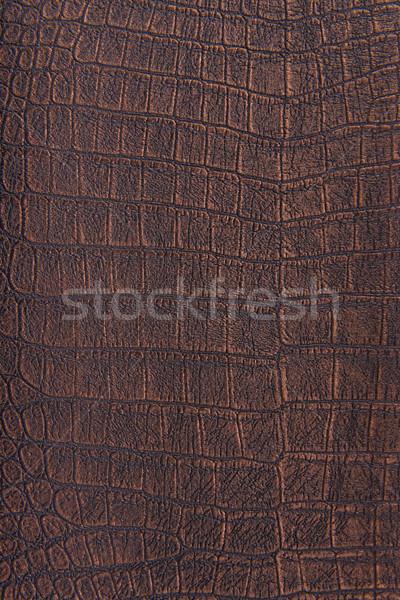 Krokodil bőr bőr bronz fémes textúra Stock fotó © Geribody