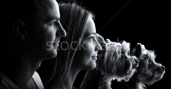 Loving couple and two yorkshire terrier dogs -Black and white profile portrait Stock photo © Geribody