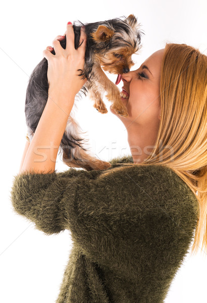 Beautiful woman's Yorkshire terrier dog gives kisses Stock photo © Geribody