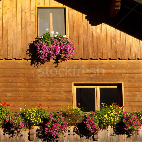 Kleurrijk bloem Windows alpine cabine Oostenrijk Stockfoto © Geribody