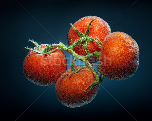 Tomato with CO2 Bubbles,underwater Stock photo © Geribody