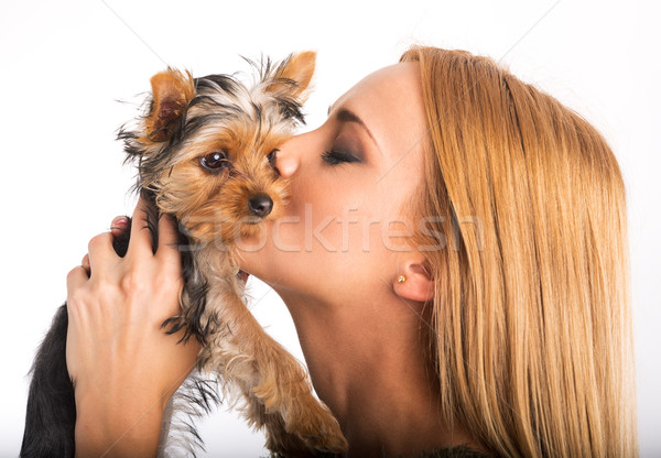 Beautiful woman to kiss the dog breed Stock photo © Geribody