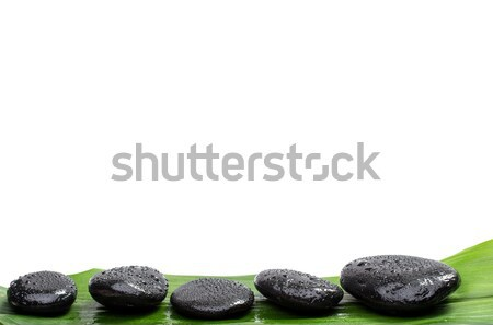 Spa stones   on green leaf, isolated background Stock photo © Geribody