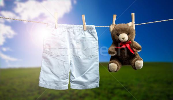 Baby boy pants, a teddy bear on the outdoor clothesline Stock photo © Geribody