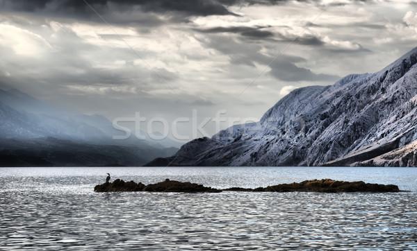 Beautiful Sea coastline landscape in Croatia Stock photo © Geribody