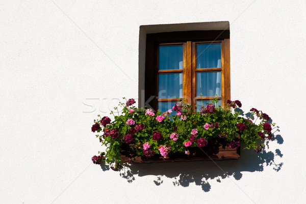 Colorido flor windows alpino cabine Áustria Foto stock © Geribody