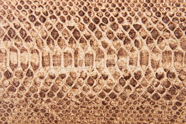 Marrom serpente padrão imitação abstrato projeto Foto stock © Geribody