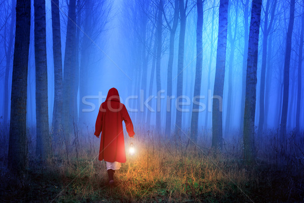 Little Red Riding Hood in the forest Stock photo © Geribody