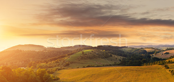 Beautiful hilly field, photographed from a height Stock photo © Geribody