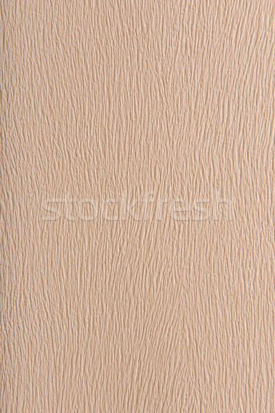 Grained beige background Stock photo © Geribody