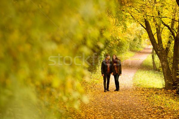 Lovers spaceru strony jesienią parku niebo Zdjęcia stock © Geribody