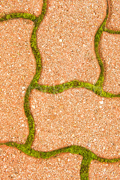 Cobblestone pavement in between - green moss  Stock photo © Geribody