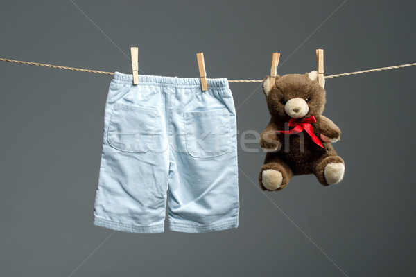 Baby boy pants, a teddy bear on the clothesline Stock photo © Geribody