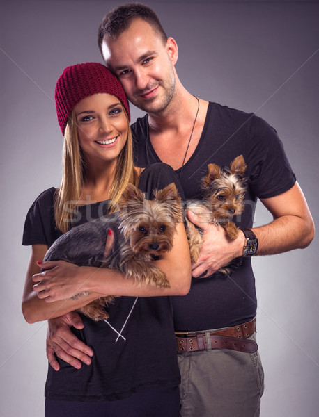 愛する カップル 2 ヨークシャー テリア 犬 ストックフォト © Geribody