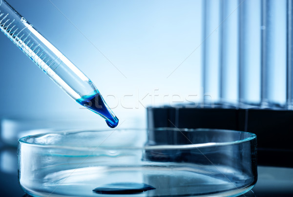Laboratory equipment, one drops liquid  in glass bowl Stock photo © Geribody