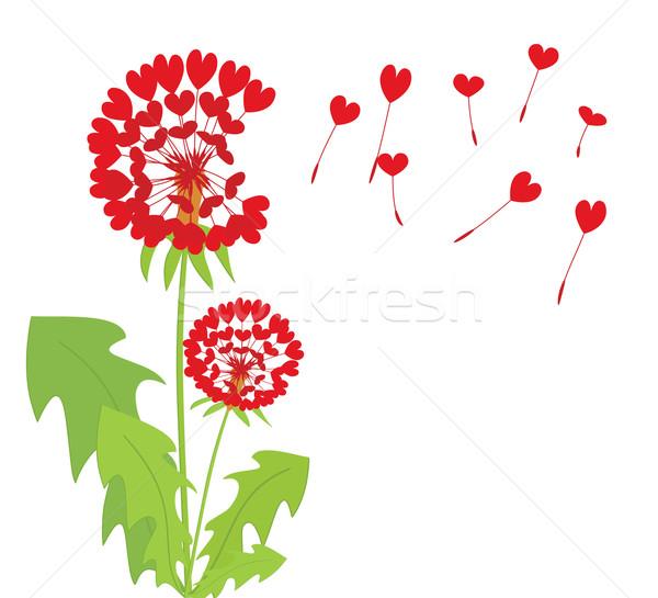 romantic dandelions  Stock photo © Ghenadie