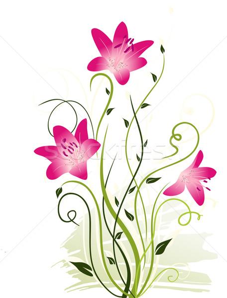 Blumen Herz Design Blatt Schönheit Grafik Stock foto © Ghenadie