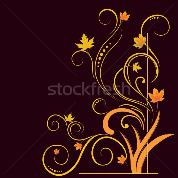 floral elements on autumn theme  Stock photo © Ghenadie