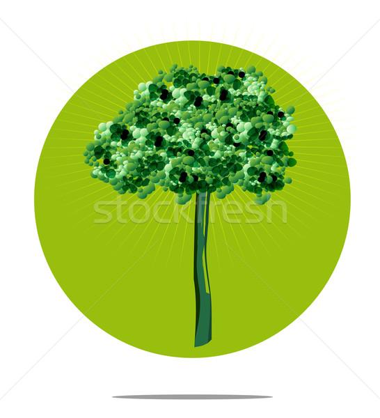 Illustration arbre vert cercle bois forêt Photo stock © gigra