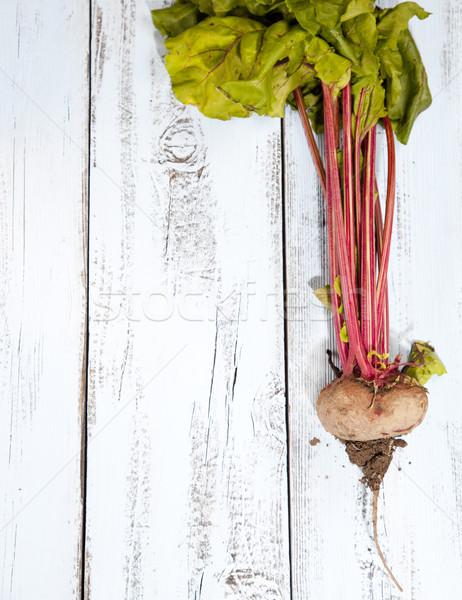 葉 白 青 木製 自然 赤 ストックフォト © gigra