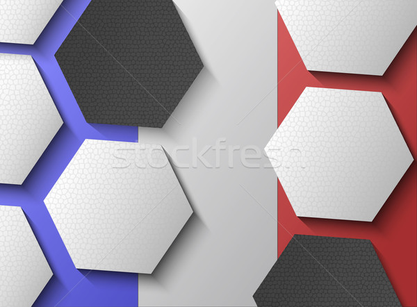 Illustration of French flag with soccer items Stock photo © gigra
