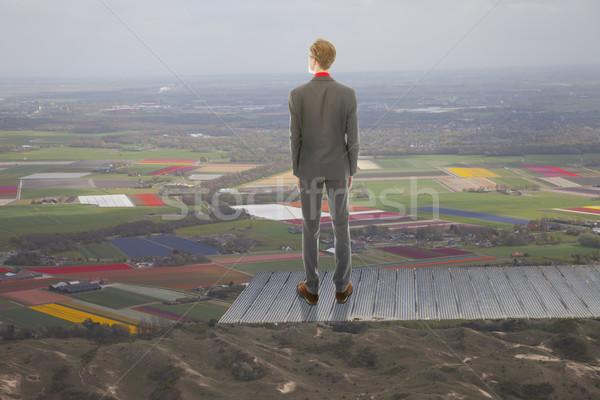 Genç iş adamı bakıyor manzara çalışmak işadamı Stok fotoğraf © gigra