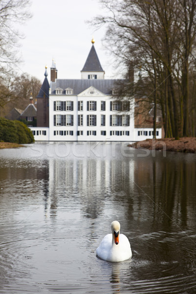 White swan with castle of Renswoude, The Netherlands Stock photo © gigra
