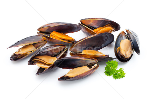 Mussels isolated on white background. Sea food. Stock photo © gitusik