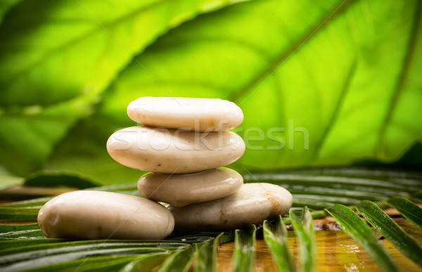 Foto d'archivio: Spa · pietre · equilibrata · foglie · verdi · abstract · foglia