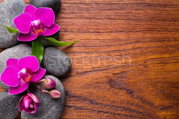 Orchidea fiore legno spa pietre abstract Foto d'archivio © gitusik