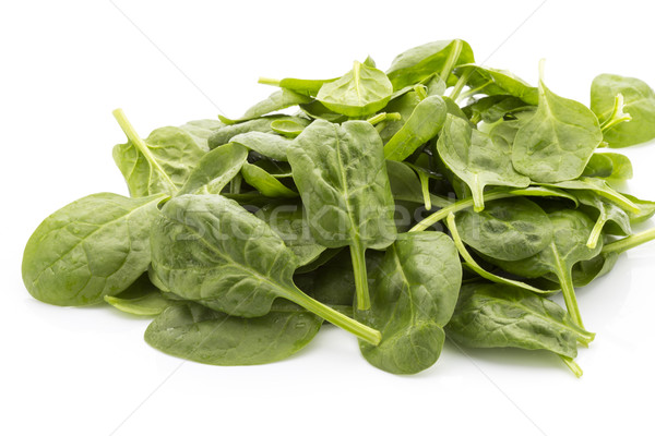Spinach isolated on the white background. Stock photo © gitusik